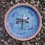 birdbath-dragonfly